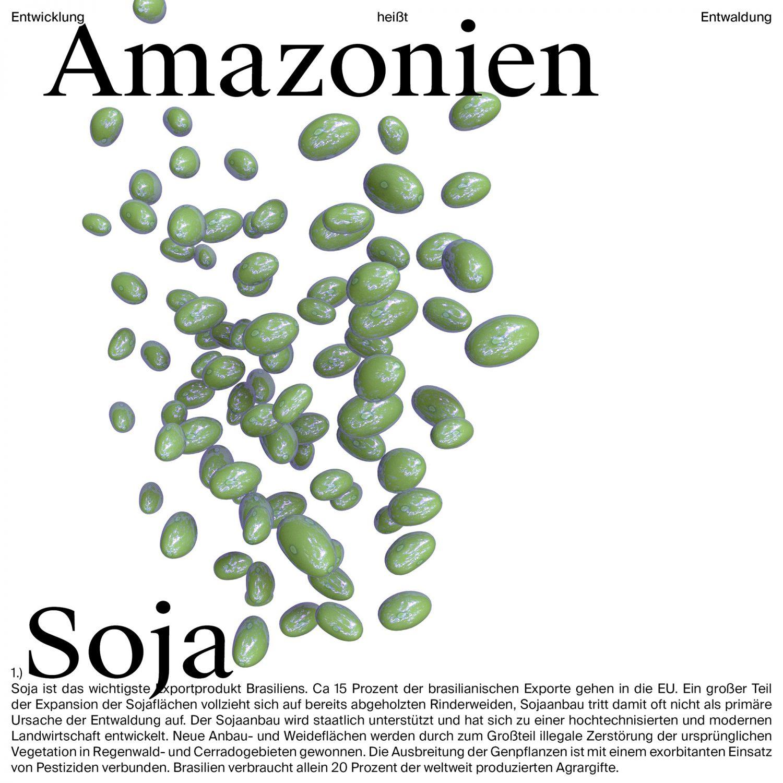 Amazonien – Entwicklung heißt Entwaldung