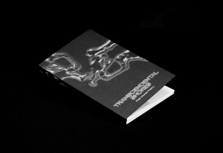 Transcendental Shores – Post-Human Poetry